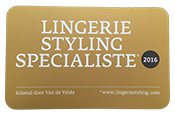 Lingerie Styling Specialist 2016